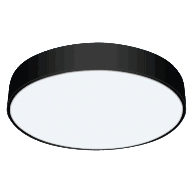 Fashionable ceiling light Series